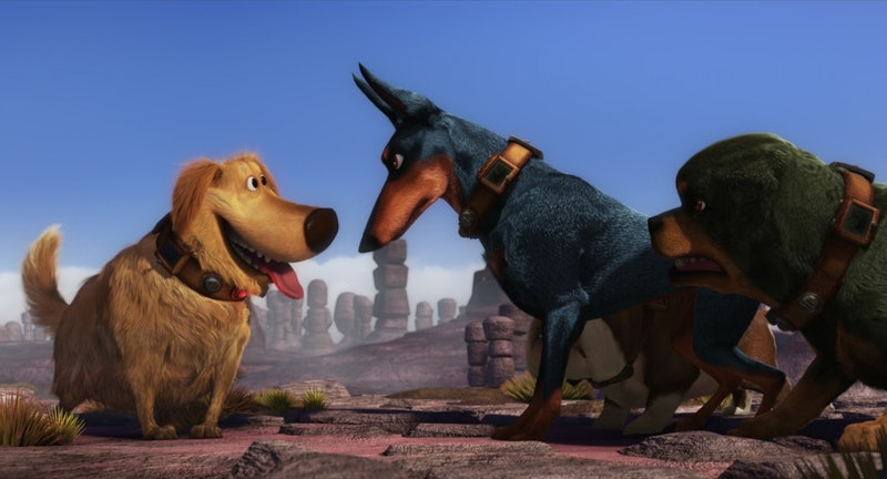 All the dog movies and shows you need to stream on Disney+
