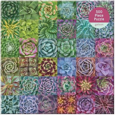 Galison Succulent Spectrum Puzzle (500 Pieces)