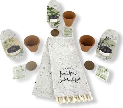 Buzzy Organic Herb Growth Kit