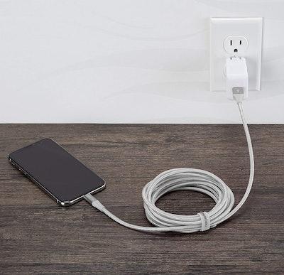 AmazonBasics 10-Feet Phone Charger