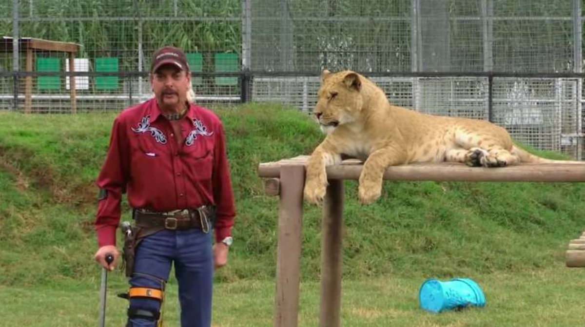 """""""Tiger King"""" on Netflix is full of twists, turns, and wild facts starring Joe Exotic"""