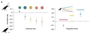chart showing differences in birds' rate of innovation compared with extinction risk