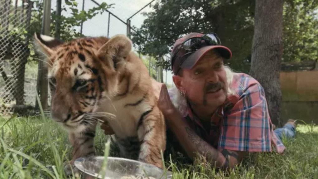 Celebrities react to Netflix's 'Tiger King'
