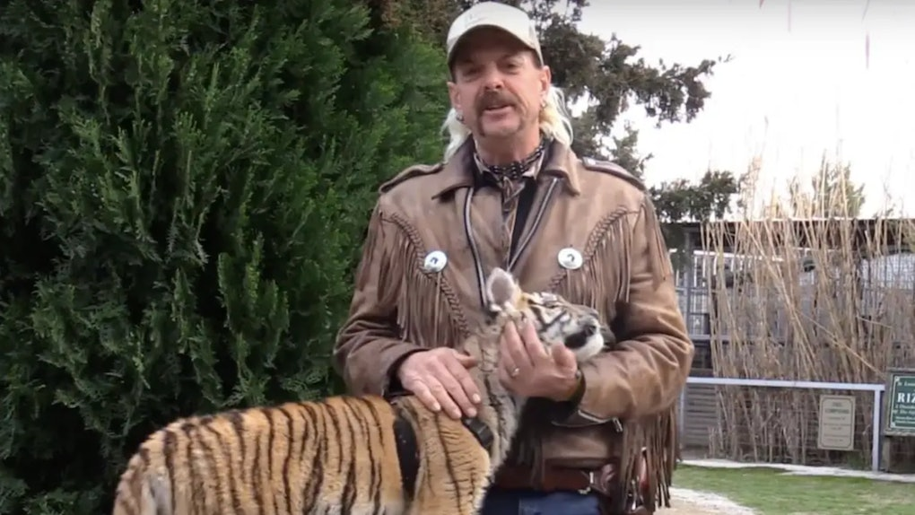 "Here's what happened to Joe Exotic's tigers after Netflix's ""Tiger King"""