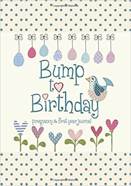 Bump to Birthday Journal