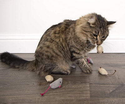 SmartyCat Catnip Toys (3-Pack)