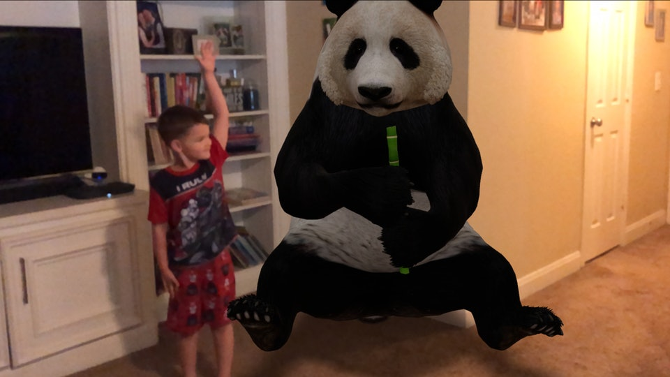Having a panda in your living room is totally possible thanks to Google's AR animals.