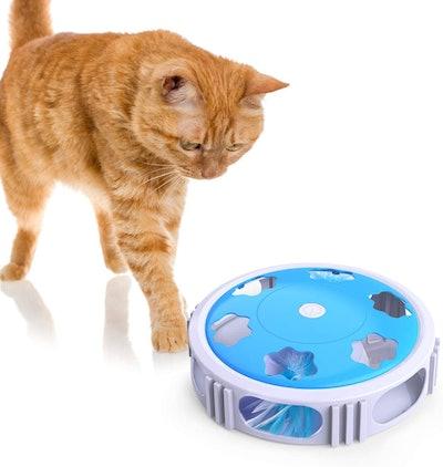 DADYPET Interactive Cat Toy