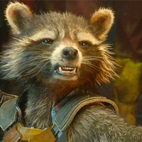 'Guardians of the Galaxy Vol. 3' leak teases Rocket's shocking origin story