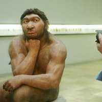 Discovery gives crucial new insight into Neanderthals' minds