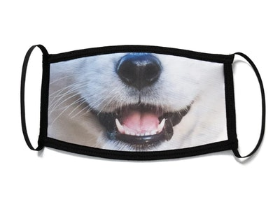 Corgi Snout Face Mask