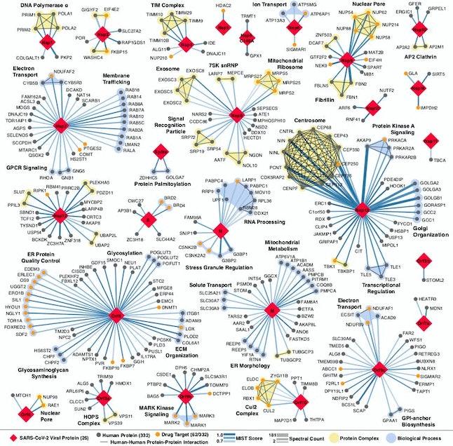 The coronavirus attacks human cells using dozens of devious tricks.