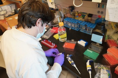 Laboratory testing is excellent at generating leads but clinical trials must be done to know if thes...