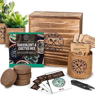 Garden Republic ·Succulent Seed Starter Kit