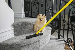 Evriholder FURemover Pet Hair Removal Broom