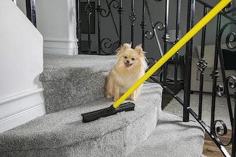 Evriholder FURemover Pet Hair Removal Broom
