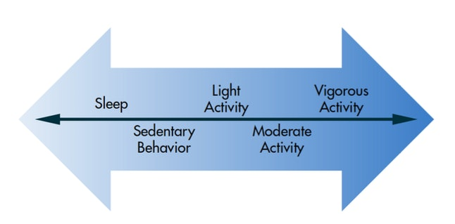 The activity spectrum spans from 'sleep' to 'vigorous activity.' Renee J. Rogers, Author provided