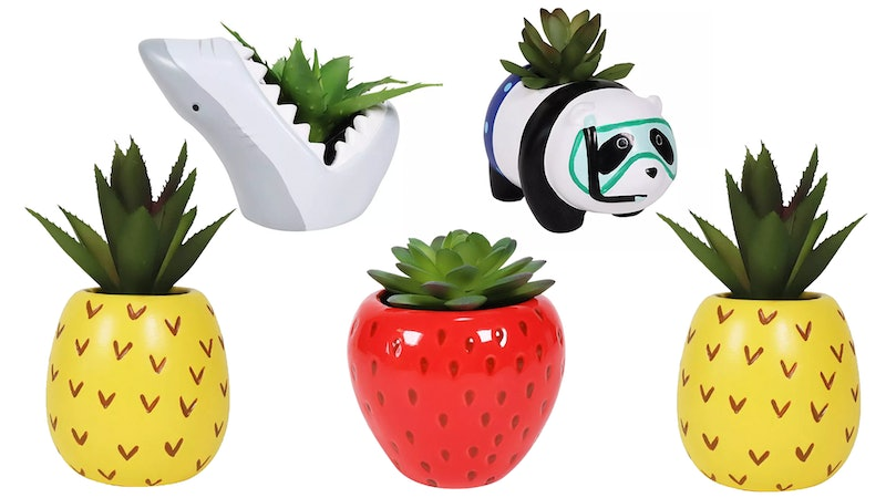 Target's line of fake succulents includes artificial plants in cute pots shaped like fruit and animals.