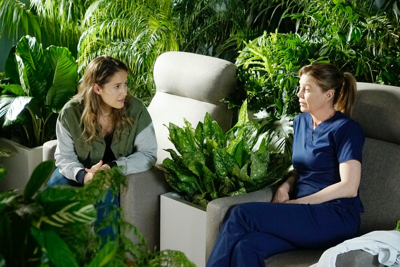 Andy Herrera and Meredith Grey On Station 19