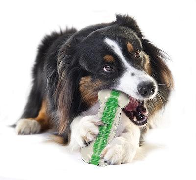 Petstages CRUNCHCORE Chew Toy