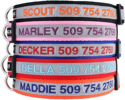 GoTags Reflective Personalized Dog Collar
