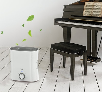 TaoTronics Evaporative Instrument Humidifier