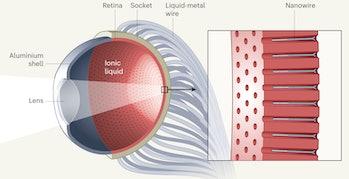 biomem eye