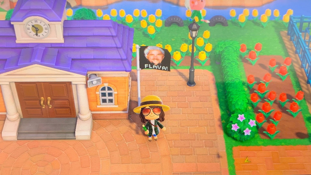 A screenshot of 'Animal Crossing: New Horizons' shows a woman standing next to her cottage and Guy Fieri-inspired flag.