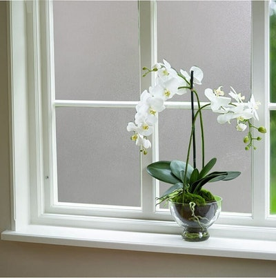 Coavas Frosted Privacy Window Film
