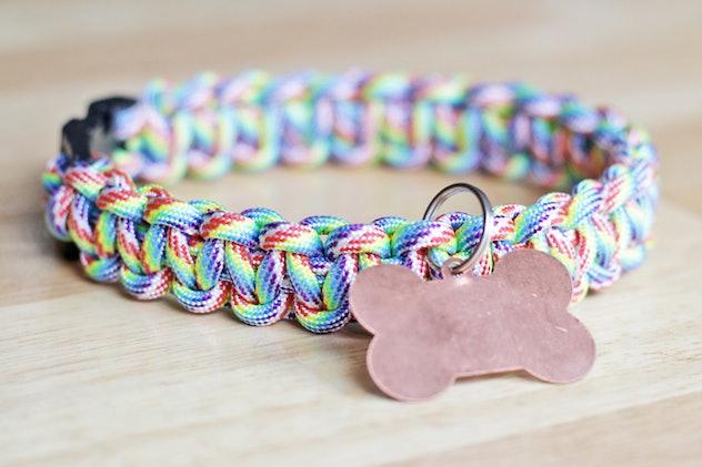 rainbow paracord dog collar