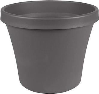 Bloem Terra Plastic Pot Planter