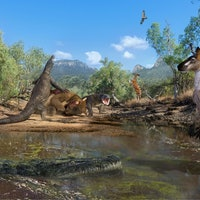New study: In ancient Australia, humans lived in a world with true giants