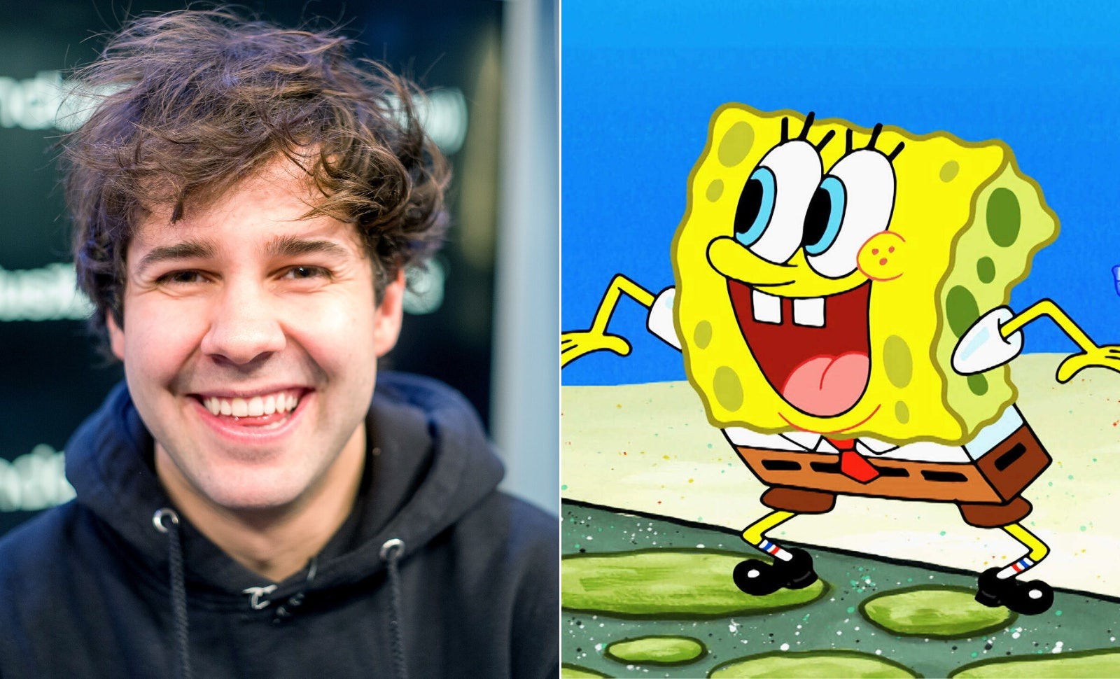 A  SpongeBob SquarePant Special Hosted By David Dobrik Will Bring The Cast Together
