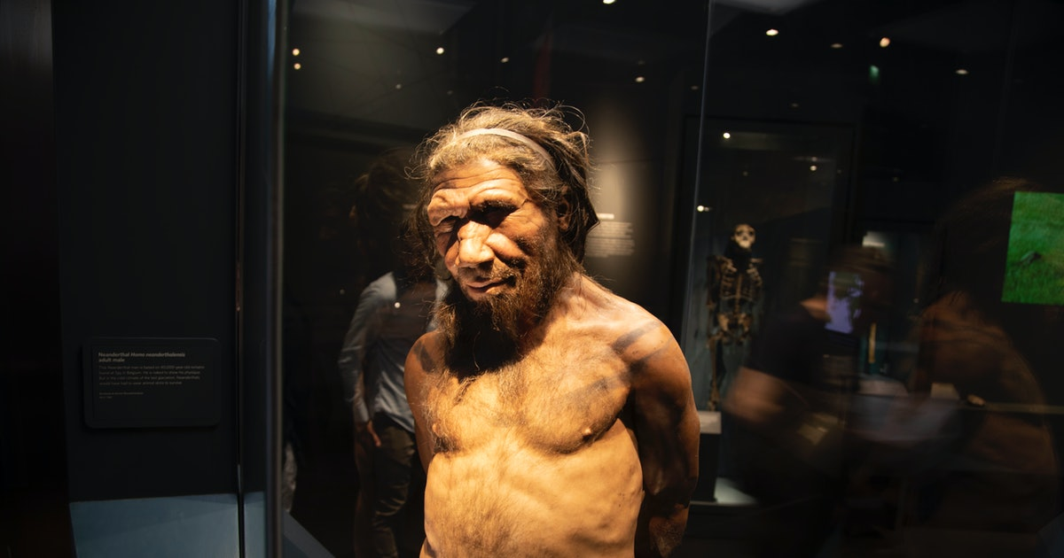 """New Neanderthal report helps explain why """"they were a lot like us"""""""