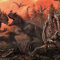 Paleontologists discover rare signs of dinosaur cannibalism in Colorado
