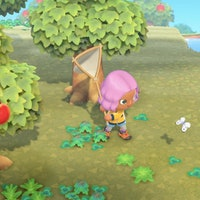 'Animal Crossing' June fish and bugs: Great white shark and 27 more to find
