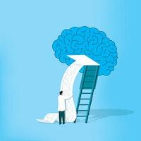 """Unprecedented"" study reveals sleeping brains replay waking experiences"