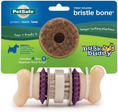 PetSafe Busy Buddy Bristle Bone Chew Toy