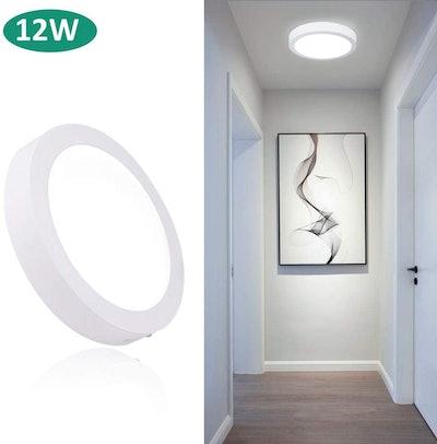 Dinglilighting Round LED Flush Mount Ceiling Light