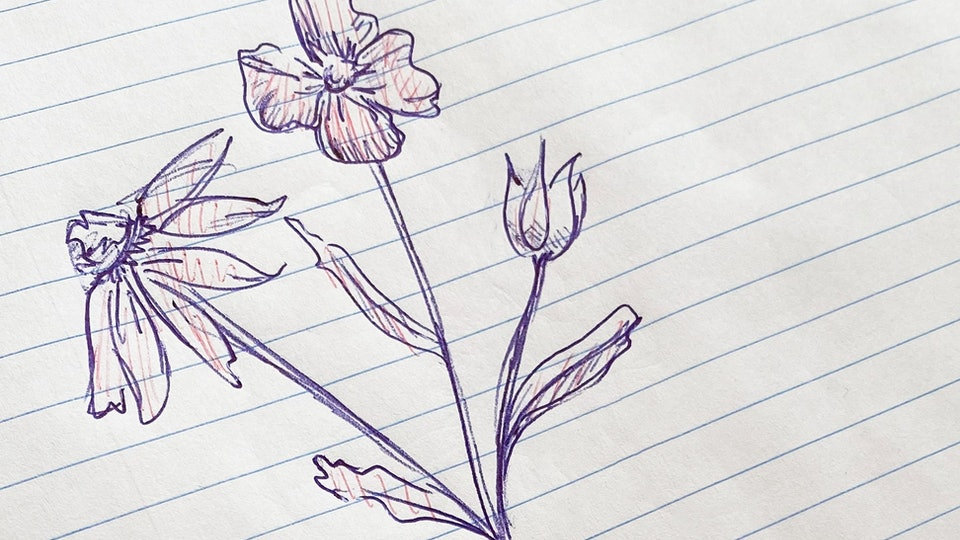 an ink drawing of flowers on lined paper