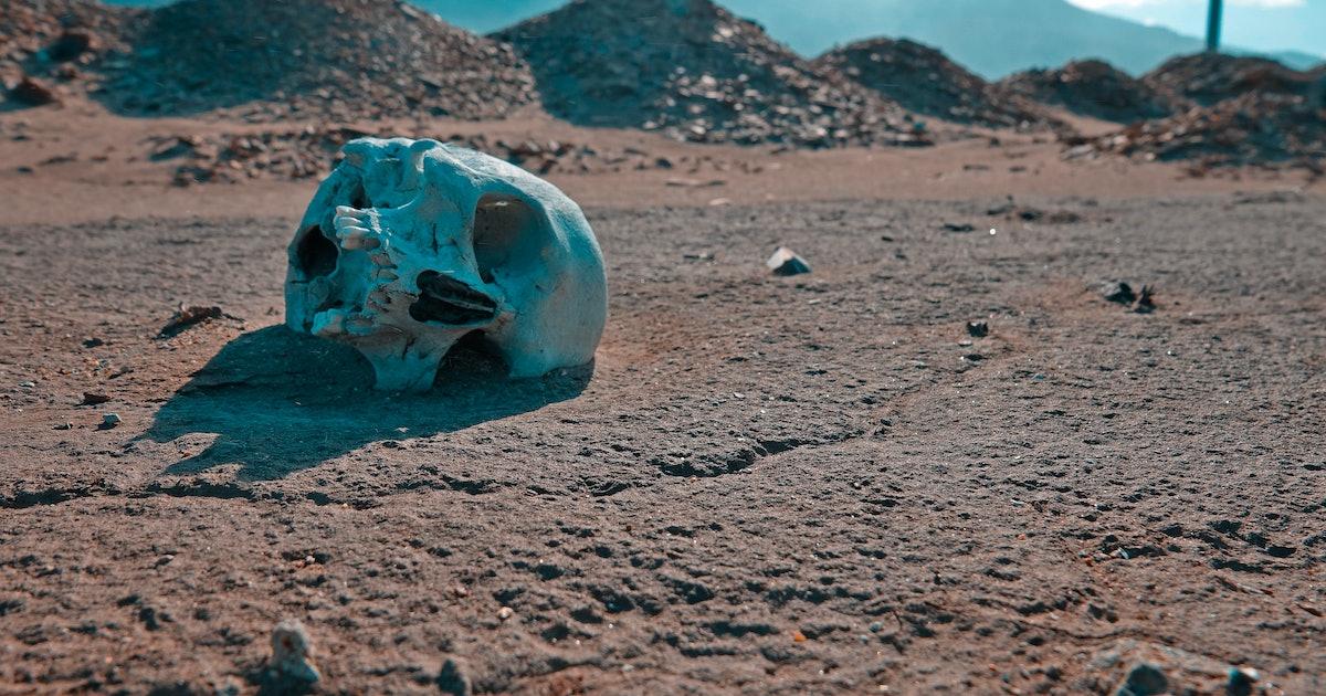 Will humans go extinct?