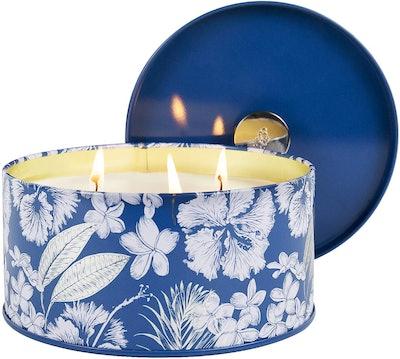 La Jolie Muse Sandalwood Clean Cotton Large Scented Candle (14 Ounces)