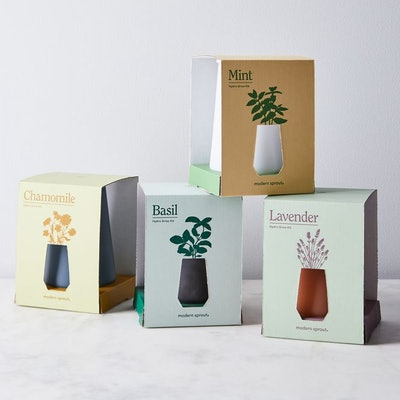 Smoked Glass Garden Grow Kit (Set of 4)