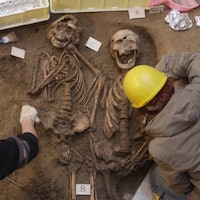 The archaeological record reveals something strange about diseases throughout history