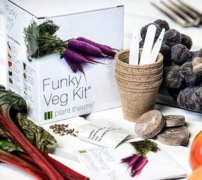 Plant Theatre Funky Veg Kit