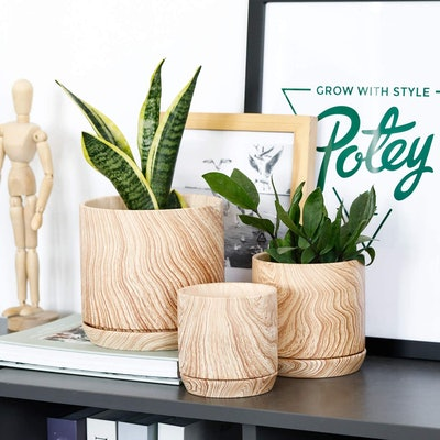 Potey Ceramic Pots (3-Pack)