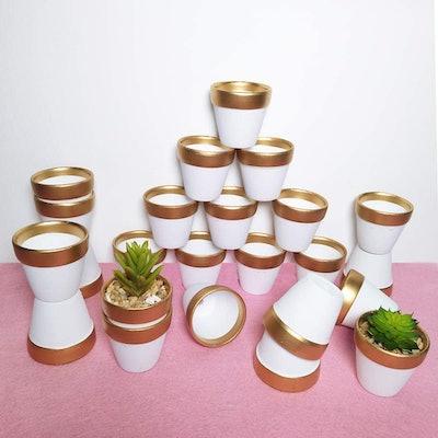 Winlyn Mini Terracotta Pots (24-Pack)