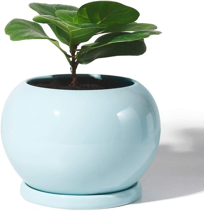 Potey Planter Ceramic Plant Flower Pot