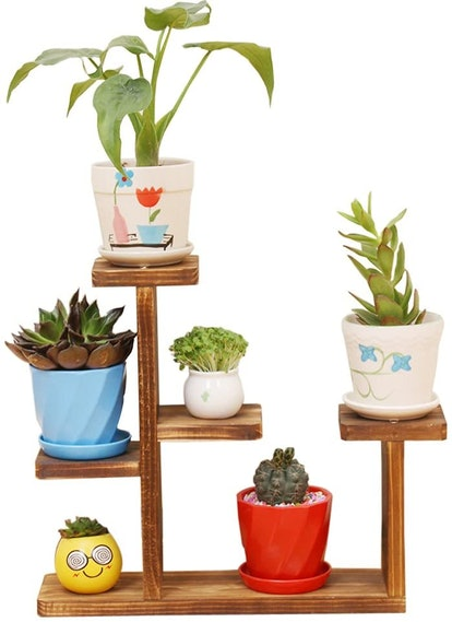 Exttlliy Wooden Mini Tabletop Plant Stand