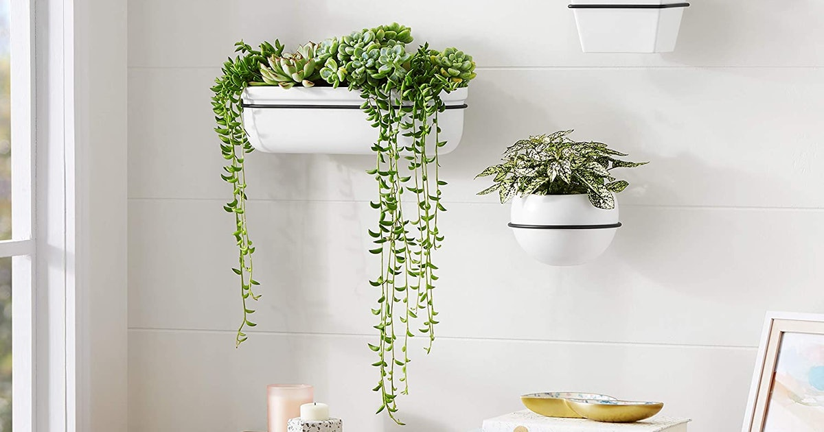 These Are The Most Stylish & Sturdy Planters For Showing Off Your Plant Babies